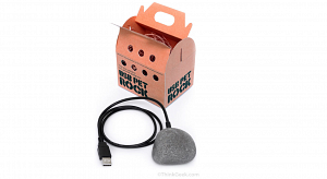 USB Pet Rock from ThinkGeek